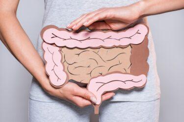 腸からのお便り、毎日届いていますか?